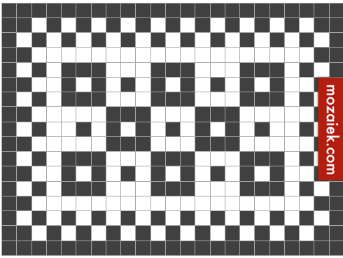 Top zwart wit geblokte tegelvloer - tegels anno 1900-1930 &LO43